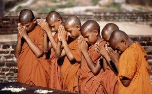 5 bonnes raisons d'aller au Sri Lanka